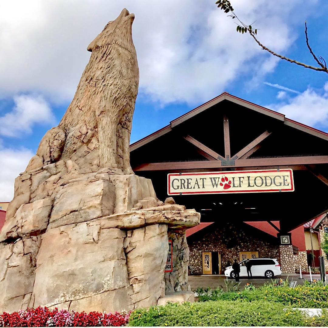 #GreatWolfLodge #travel #familytravel #waterpark #blogger #ad