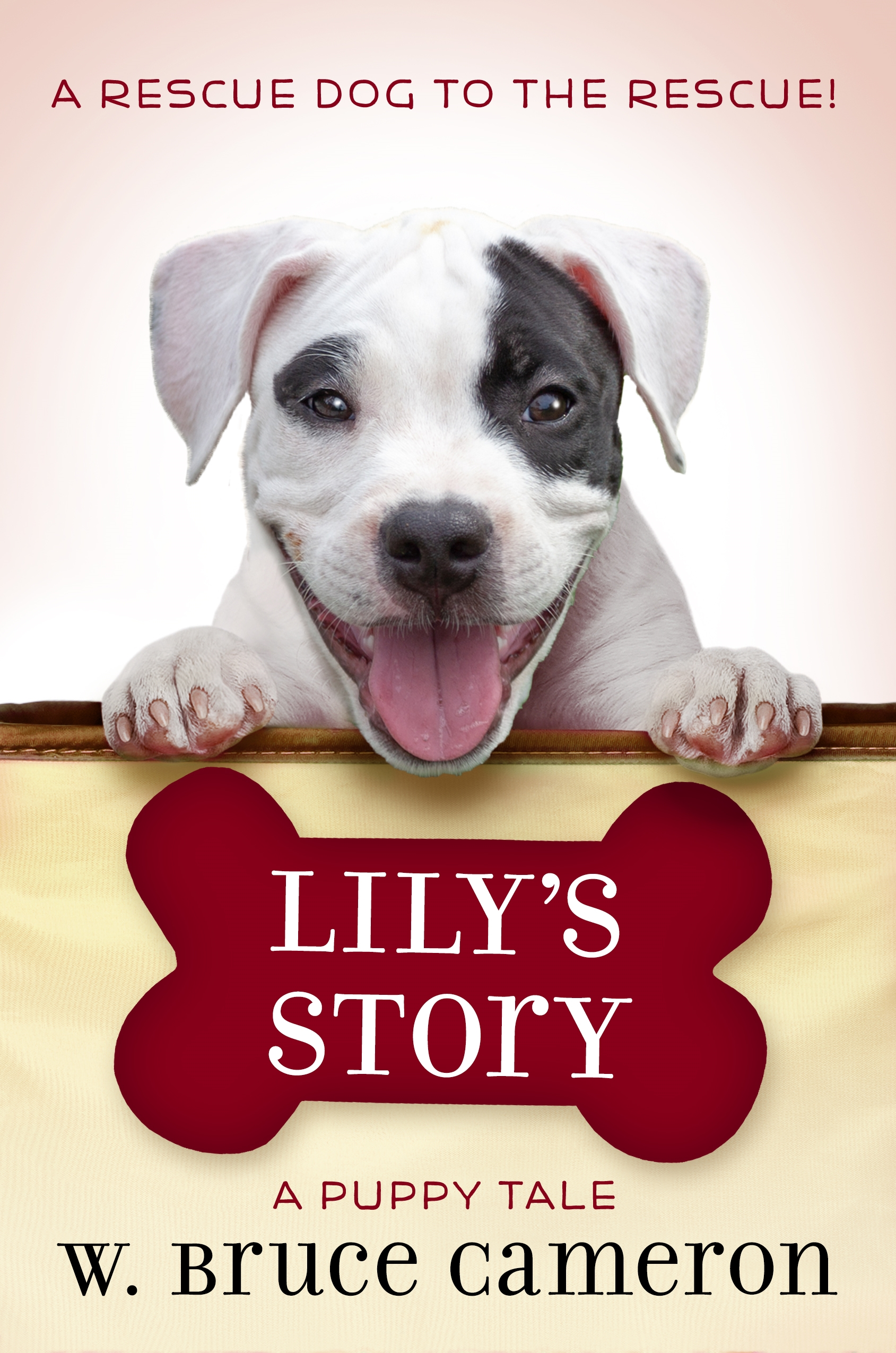 Lily's Story Book by W. Bruce Cameron