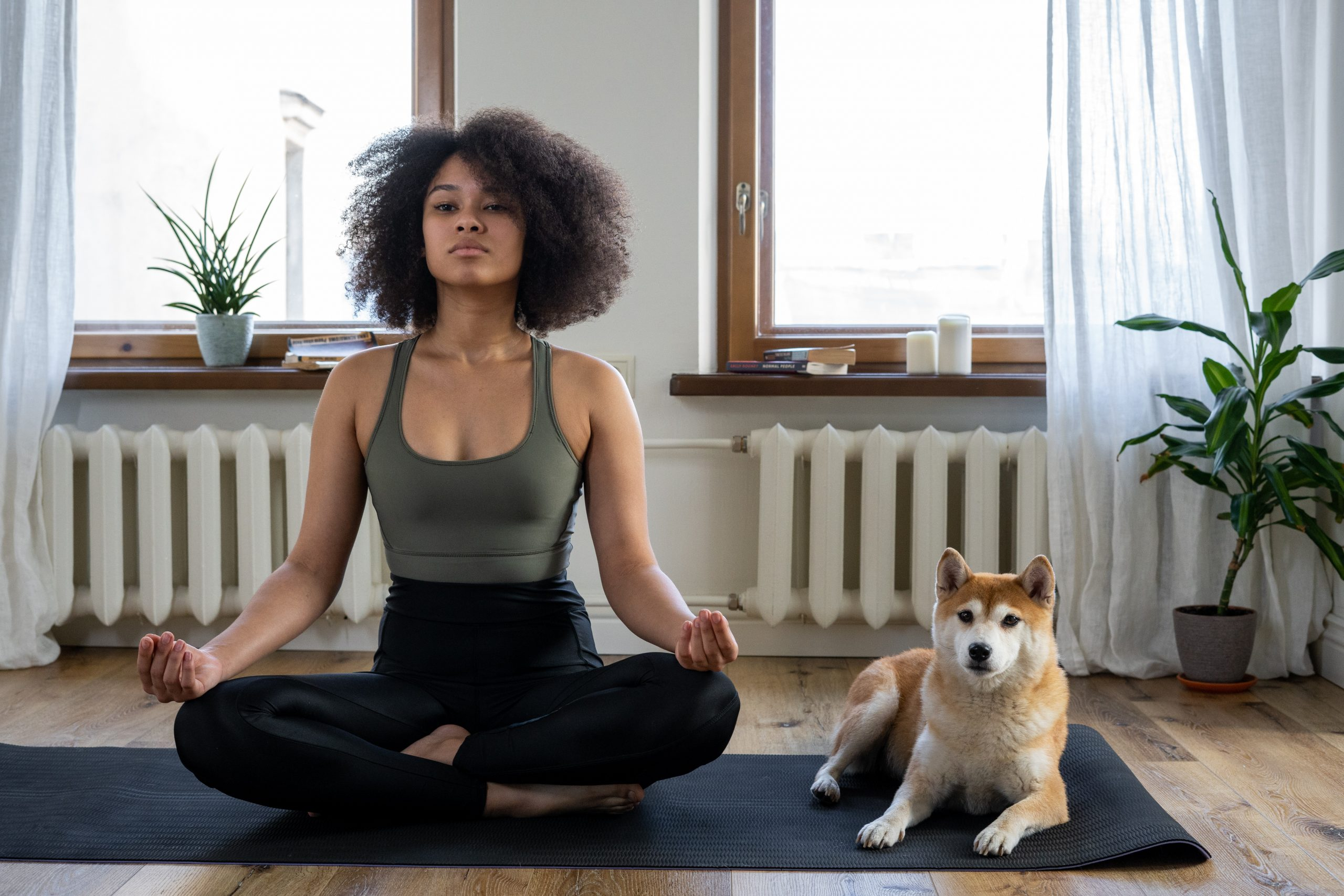 Woman meditating with dog in house