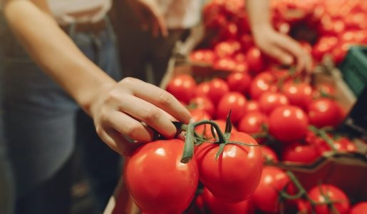 Seasonal Food Items You Can Find at a Local Grocery Store Near You